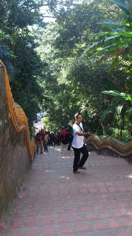 Over 300 steps up to Doi Suthep